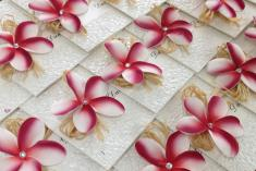 10% Off $500 plus orders Caringbah Invitation & Stationery Suppliers 3 _small